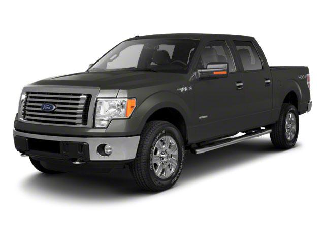 2010 Ford F-150 Vehicle Photo in Denver, CO 80123