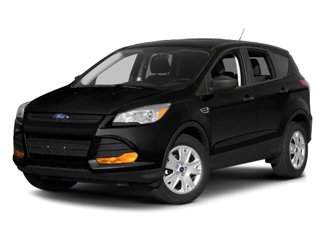 2013 Ford Escape Vehicle Photo in Plainfield, IL 60586