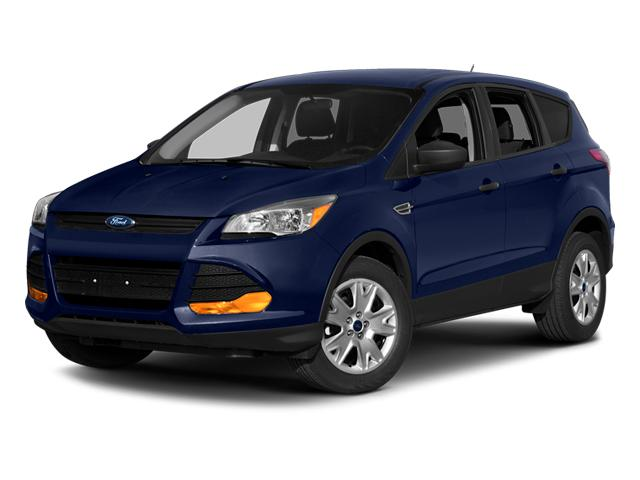 2014 Ford Escape Vehicle Photo in Plainfield, IL 60586