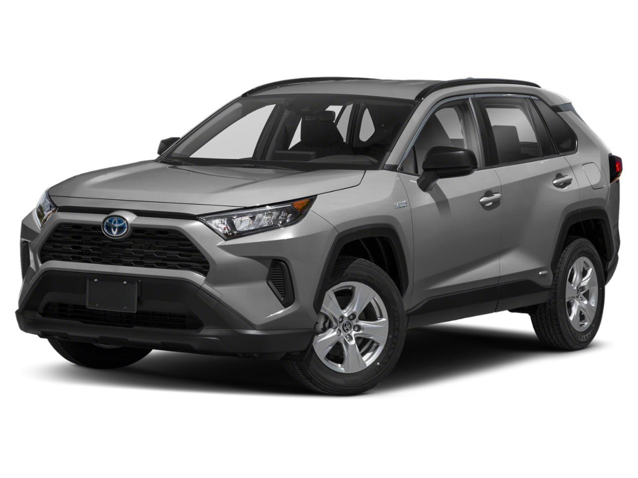2020 Toyota RAV4 Vehicle Photo in Trinidad, CO 81082