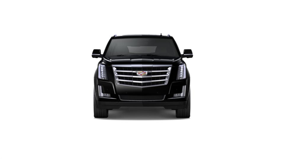 2019 Cadillac Escalade ESV Vehicle Photo in DETROIT, MI 48207-4102