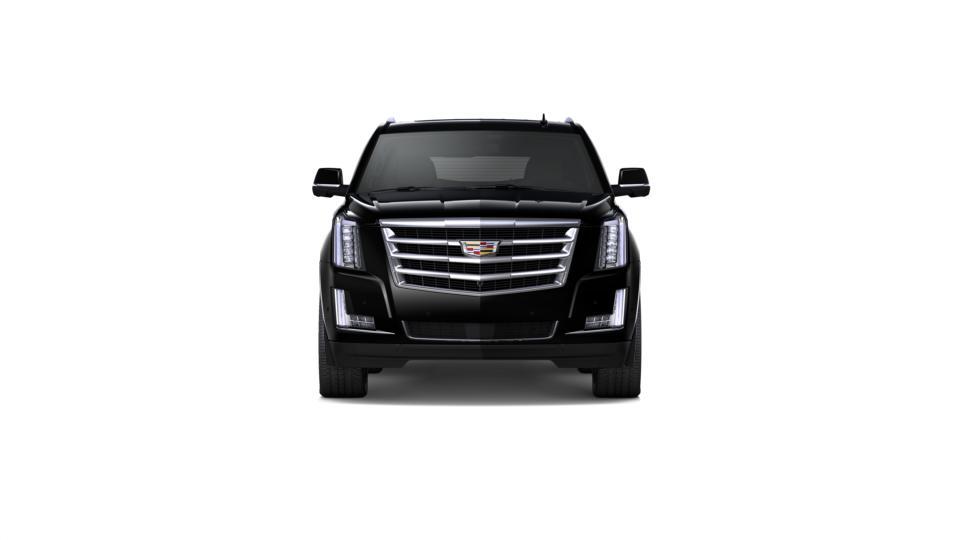 2019 Cadillac Escalade Vehicle Photo in MEDINA, OH 44256-9631
